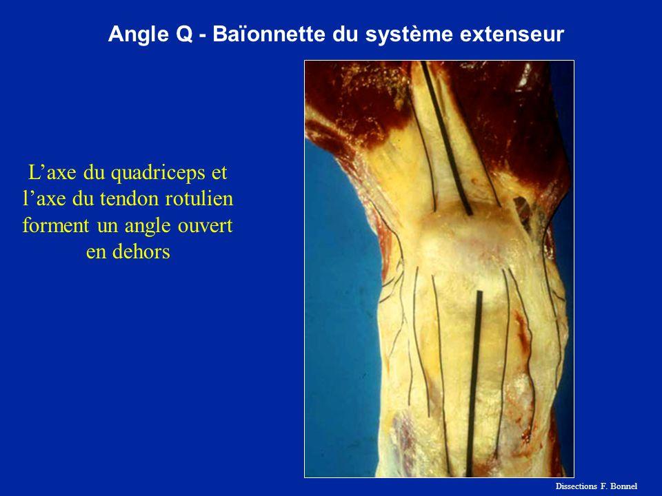 Angle Q - Baïonnette du système extenseur Laxe du quadriceps et laxe du tendon rotulien forment un angle ouvert en dehors Dissections F. Bonnel