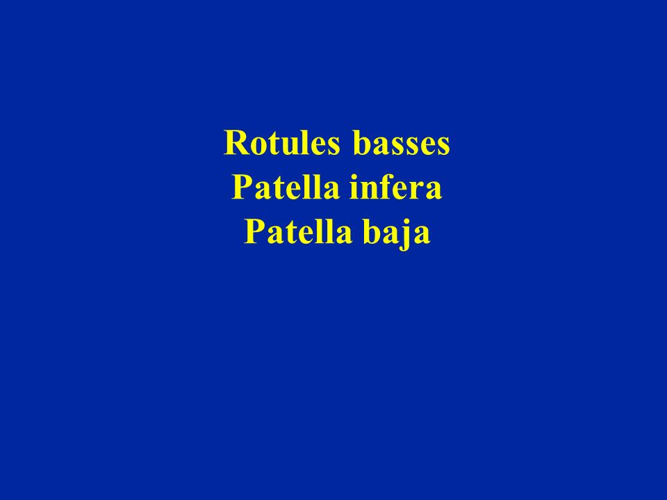 Rotules basses Patella infera Patella baja