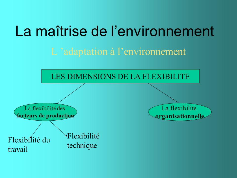 La maîtrise de lenvironnement L adaptation à lenvironnement LES DIMENSIONS DE LA FLEXIBILITE La flexibilité des facteurs de production La flexibilité