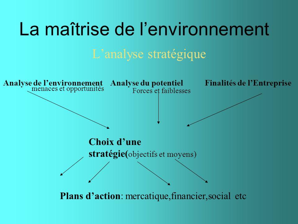 La maîtrise de lenvironnement Lanalyse stratégique Analyse de lenvironnement Analyse du potentiel Finalités de lEntreprise Choix dune stratégie( objec