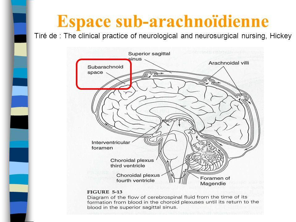 Espace sub-arachnoïdienne Tiré de : The clinical practice of neurological and neurosurgical nursing, Hickey