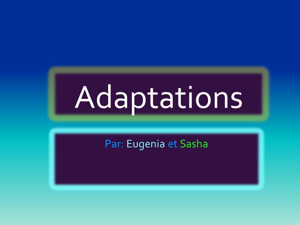 Adaptations Par: Eugenia et Sasha