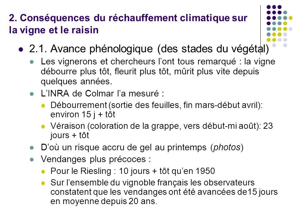 2. Conséquences du réchauffement climatique sur la vigne et le raisin 2.1. Avance phénologique (des stades du végétal) Les vignerons et chercheurs lon