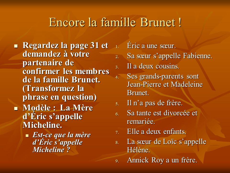 Encore la famille Brunet ! Regardez la page 31 et demandez à votre partenaire de confirmer les membres de la famille Brunet. (Transformez la phrase en