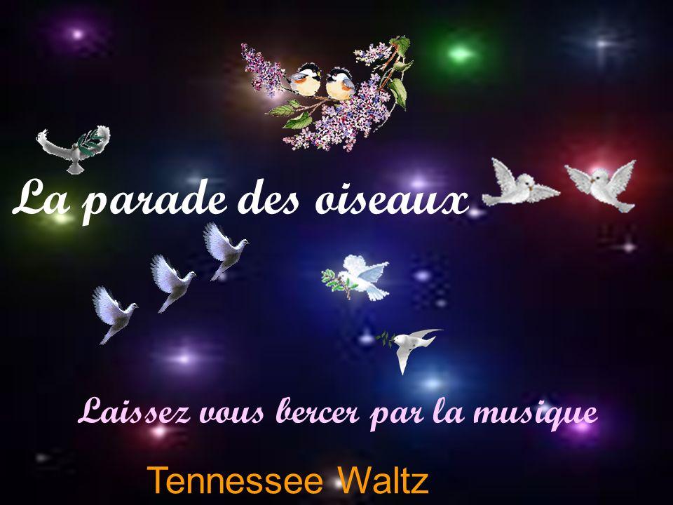 Tennessee Waltz Laissez vous bercer par la musique La parade des oiseaux