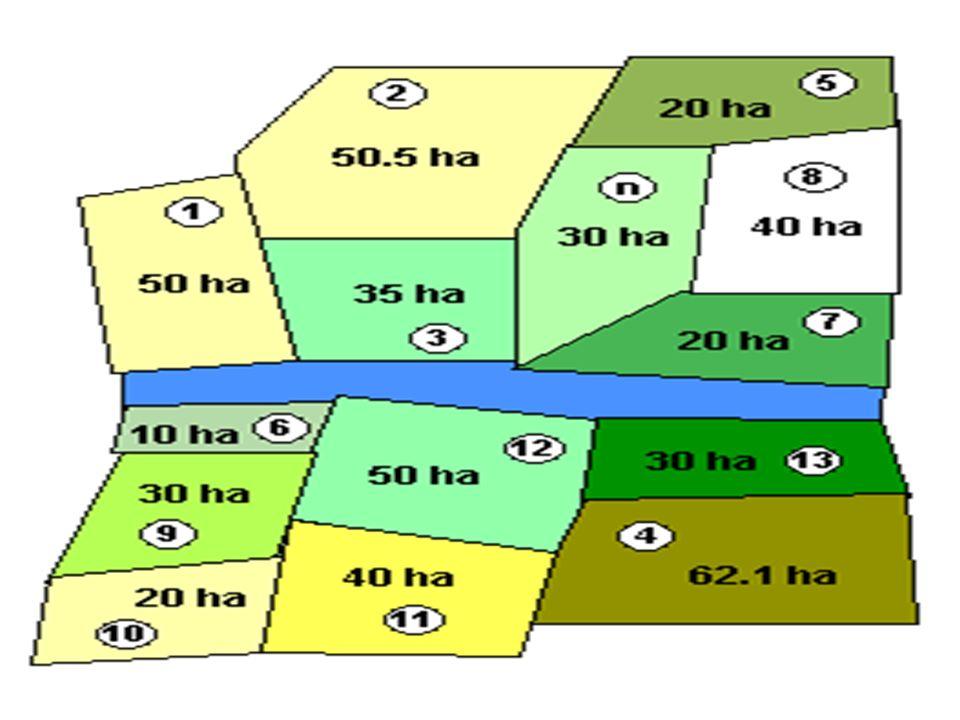 Le résultat est présenté sous la forme du tableau ci- dessous, individus variables N° Exploitati on Taille (ha) Age du chef d exploitation (années) Culture dominante Nombre de personnes employées 150 blé2 250.545vigne4 33538orge3 462.125blé6 52065vigne1 61057vigne1...