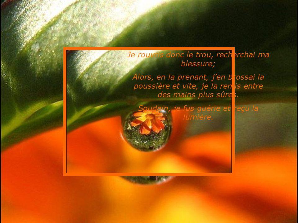 En tremblant, je montrai ma blessure au Seigneur; ne voulant rien cacher, je Lui montrai mon cœur. Il écouta soigneusement ce que javais à dire, jusqu