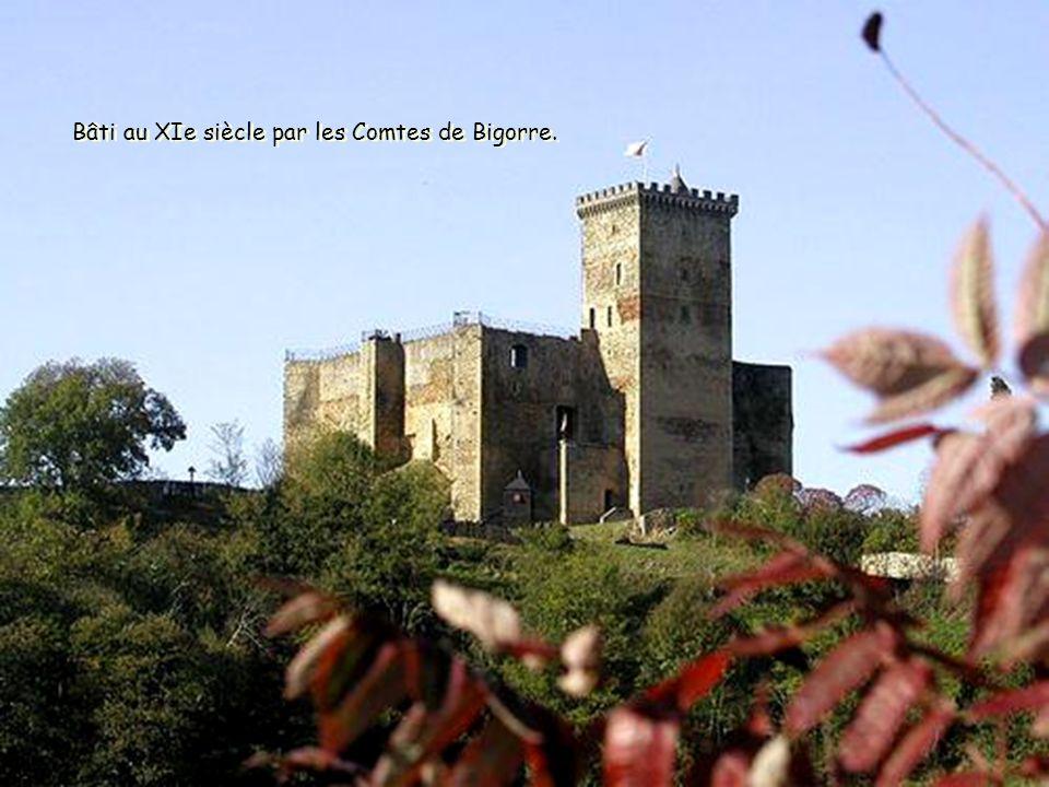 Le château de Mauvezin, sentinelle des Baronnies. Le château de Mauvezin, sentinelle des Baronnies.