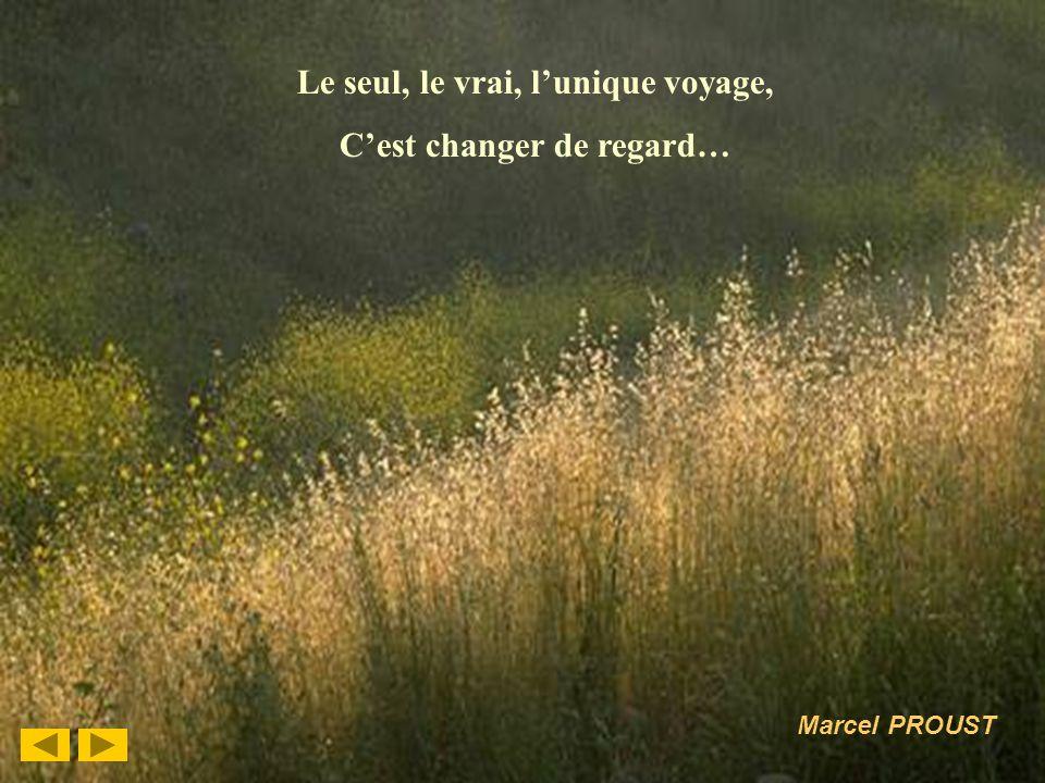 4 Le seul, le vrai, lunique voyage, Cest changer de regard… Marcel PROUST
