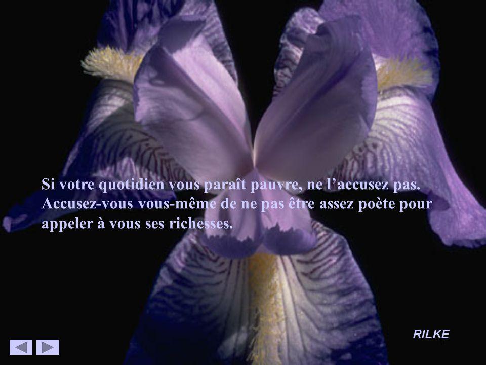 6 Si votre quotidien vous paraît pauvre, ne laccusez pas. Accusez-vous vous-même de ne pas être assez poète pour appeler à vous ses richesses. RILKE