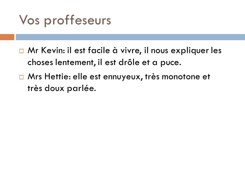 Vos proffeseurs Mr Kevin: il est facile à vivre, il nous expliquer les choses lentement, il est drôle et a puce. Mrs Hettie: elle est ennuyeux, très m
