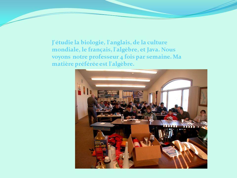 J'étudie la biologie, l'anglais, de la culture mondiale, le français, l'algèbre, et Java. Nous voyons notre professeur 4 fois par semaine. Ma matière