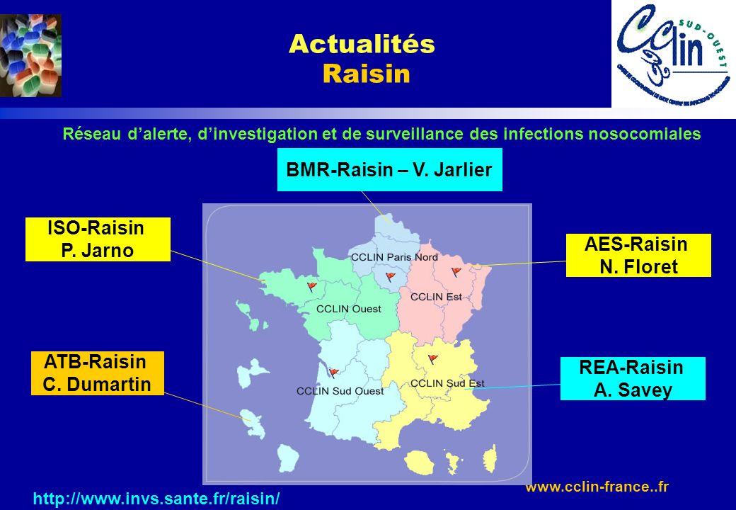 www.cclin-france..fr http://www.invs.sante.fr/raisin/ Actualités Raisin Réseau dalerte, dinvestigation et de surveillance des infections nosocomiales