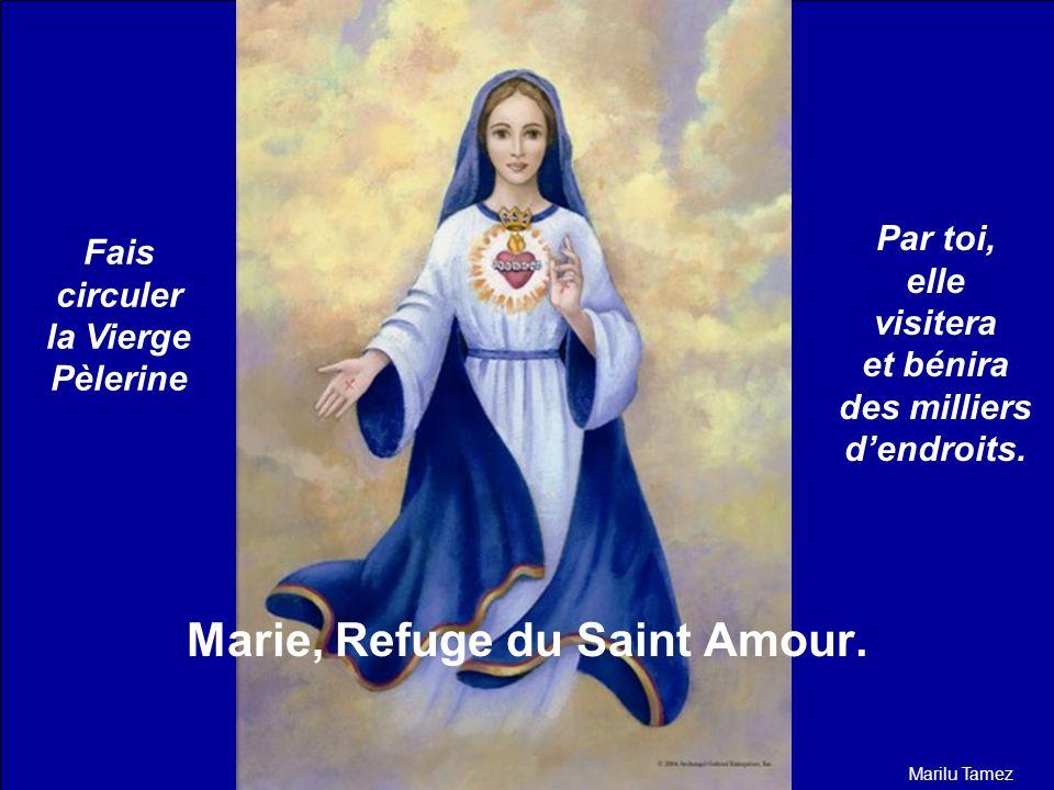 Reçois la BÉNÉDICTION DU SAINT AMOUR. Que toute la Gloire soit au Père et au Fils et à lEsprit Saint. Marie, Refuge du Saint Amour, guide-nous et prot