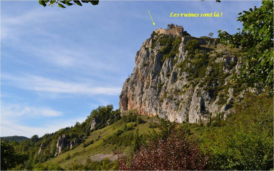 Roquefixade signifie « roche fissurée «,Roquefixade signifie « roche fissurée «, Escarpée, accidentée.Escarpée, accidentée.