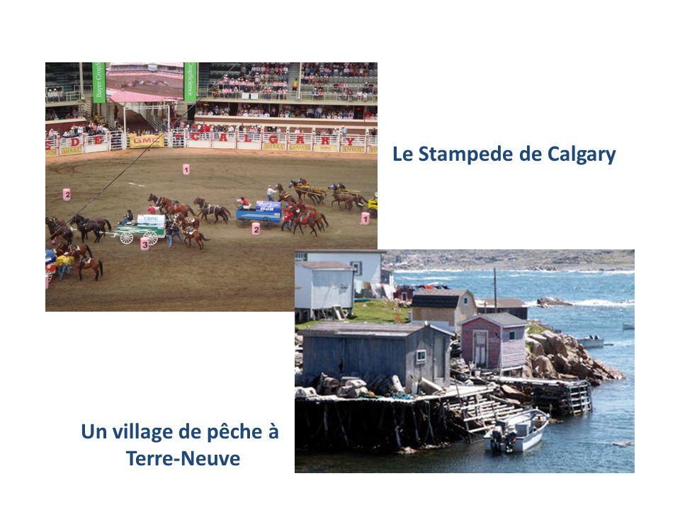 Le Stampede de Calgary Un village de pêche à Terre-Neuve