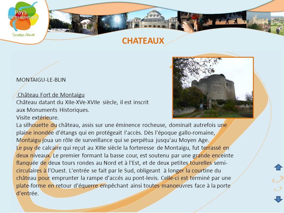 MONTAIGU-LE-BLIN Château Fort de Montaigu Château datant du XIIe-XVe-XVIIe siècle, il est inscrit aux Monuments Historiques. Visite extérieure. La sil