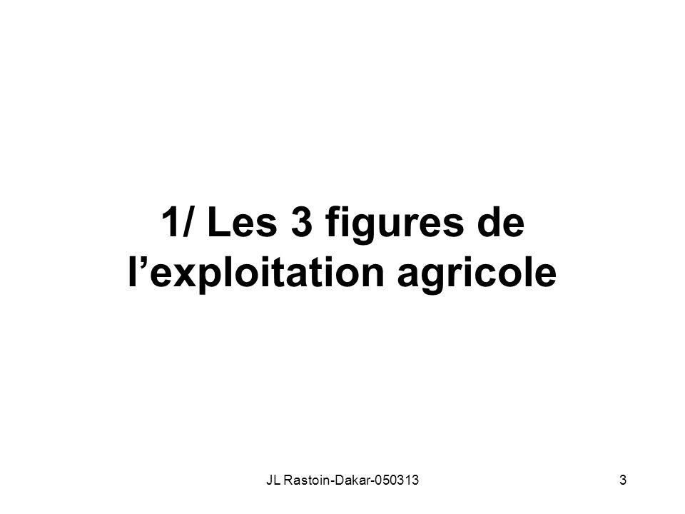 1/ Les 3 figures de lexploitation agricole JL Rastoin-Dakar-0503133