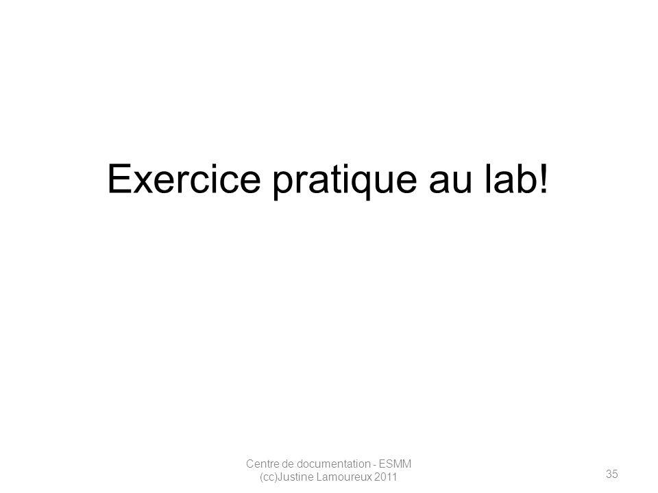35 Centre de documentation - ESMM (cc)Justine Lamoureux 2011 Exercice pratique au lab!