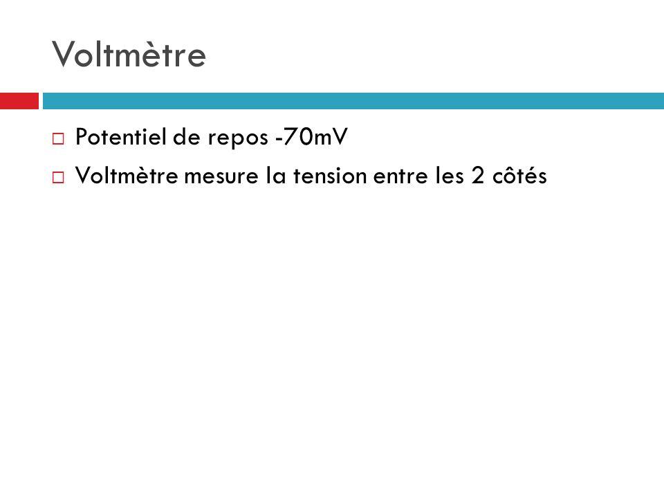 Voltmètre Potentiel de repos -70mV Voltmètre mesure la tension entre les 2 côtés