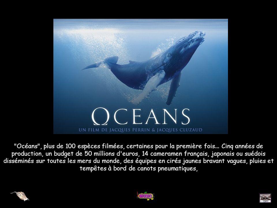 Océans , plus de 100 espèces filmées, certaines pour la première fois...