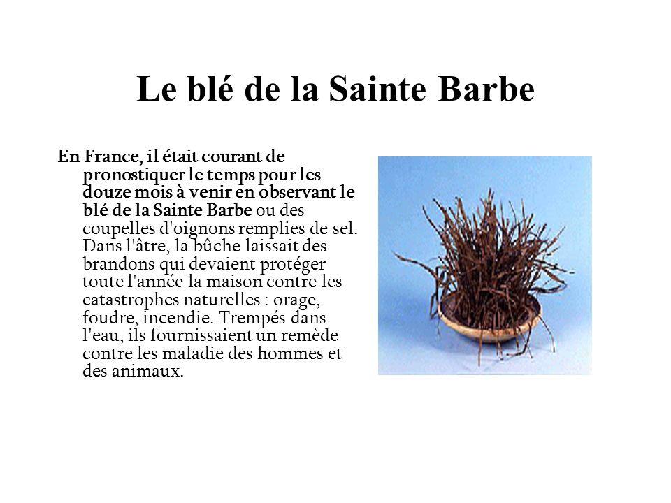 Le blé de la Sainte Barbe En France, il était courant de pronostiquer le temps pour les douze mois à venir en observant le blé de la Sainte Barbe ou des coupelles d oignons remplies de sel.