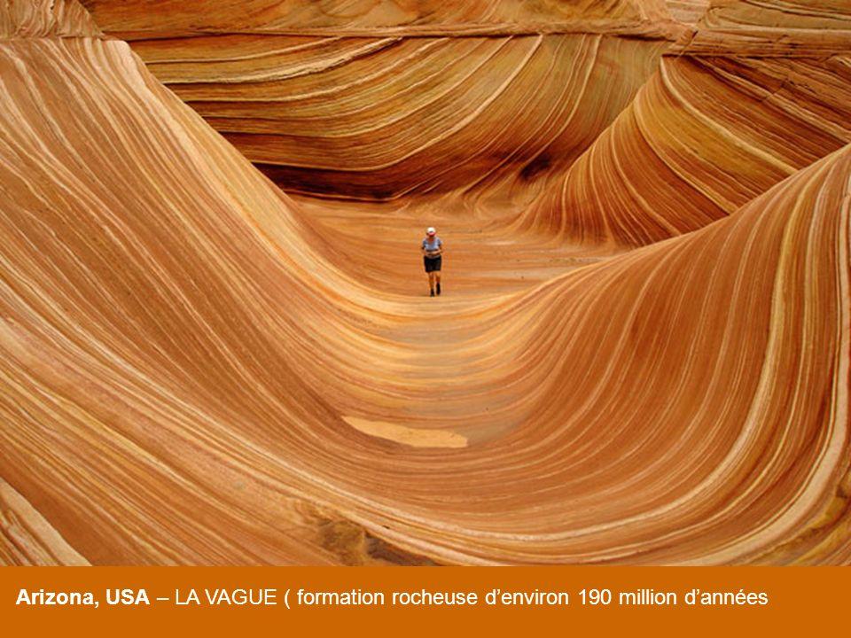 Arizona, USA – LA VAGUE ( formation rocheuse denviron 190 million dannées