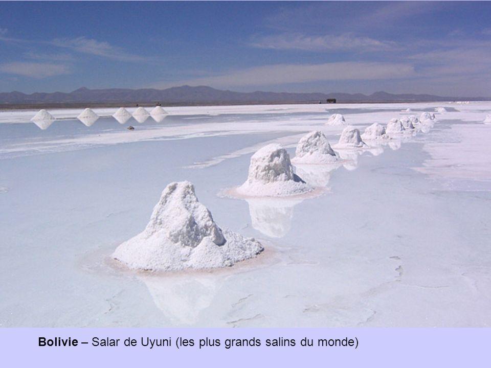 Bolivie – Salar de Uyuni (les plus grands salins du monde)