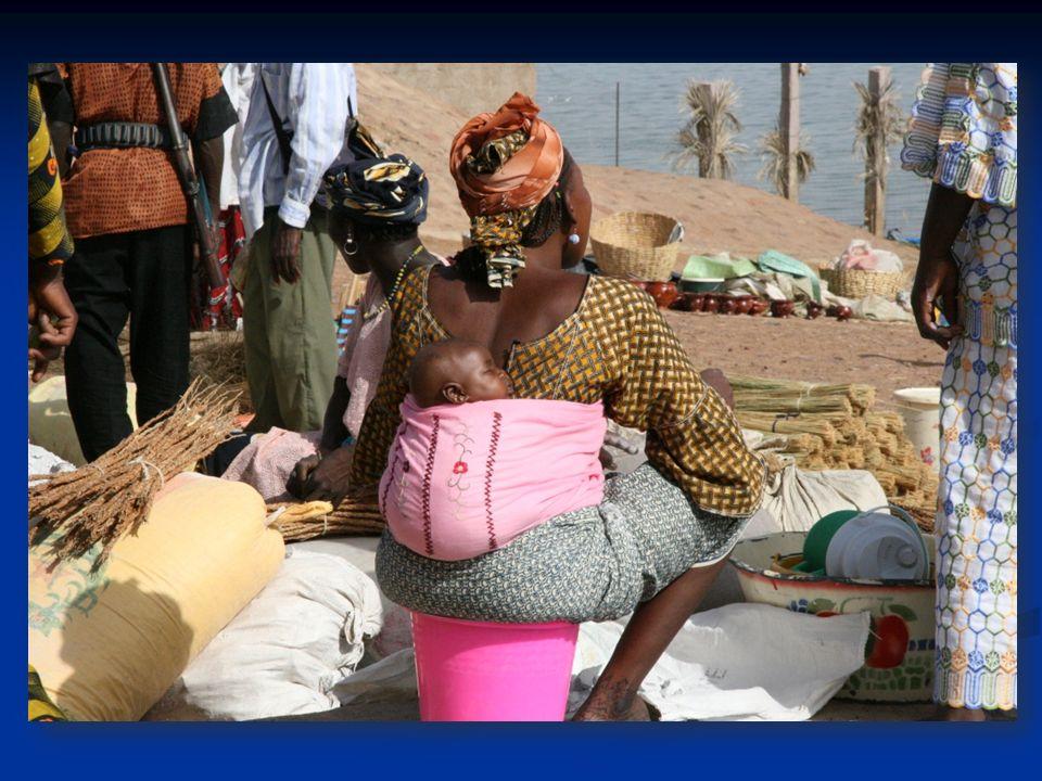 LALAD est une petite association daide au développement, fondée sur le bénévolat, qui travaille directement au cœur dun village de brousse à 40km de Bamako: Katibougou.