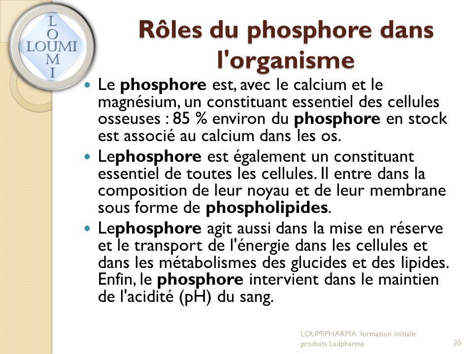 Rôles du phosphore dans l organisme Le phosphore est, avec le calcium et le magnésium, un constituant essentiel des cellules osseuses : 85 % environ du phosphore en stock est associé au calcium dans les os.