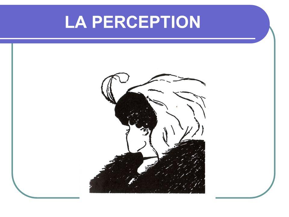 Interprétation La puissance conditionnement sur nos perceptions sur nos paradigmes Les influences que nous rencontrons ont toutes laissé en nous leur trace et contribué à fabriquer notre cadre de référence, nos paradigmes, nos «cartes» Si nous voyons le monde de façon claire et objective, dautres le voient dune façon tout aussi claire et objective, mais différente de la notre.