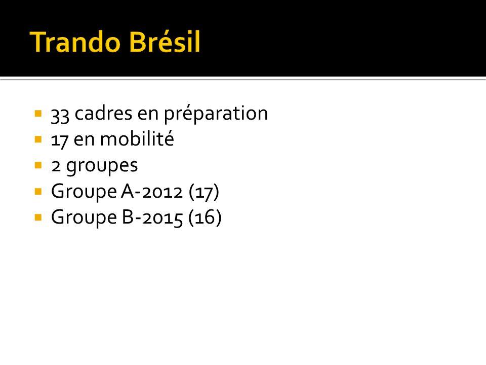 33 cadres en préparation 17 en mobilité 2 groupes Groupe A-2012 (17) Groupe B-2015 (16)