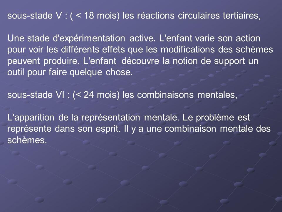 sous-stade V : ( < 18 mois) les réactions circulaires tertiaires, Une stade d'expérimentation active. L'enfant varie son action pour voir les différen