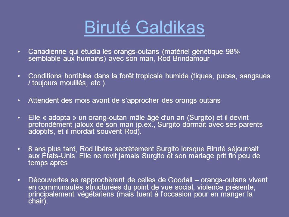 Biruté Galdikas Canadienne qui étudia les orangs-outans (matériel génétique 98% semblable aux humains) avec son mari, Rod Brindamour Conditions horrib