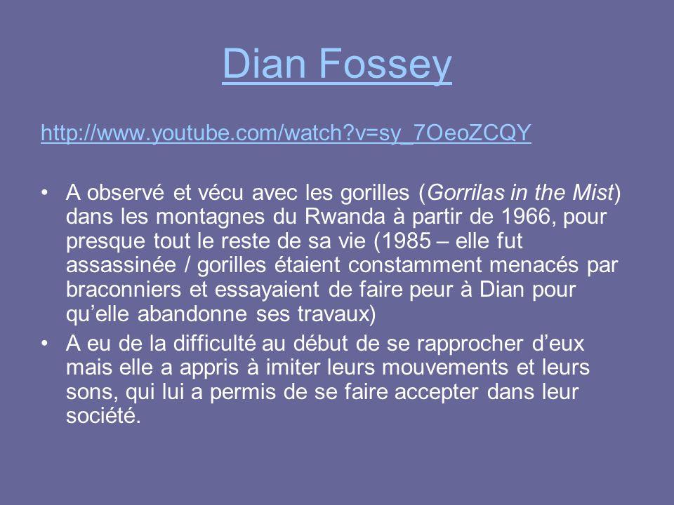 Dian Fossey http://www.youtube.com/watch?v=sy_7OeoZCQY A observé et vécu avec les gorilles (Gorrilas in the Mist) dans les montagnes du Rwanda à parti