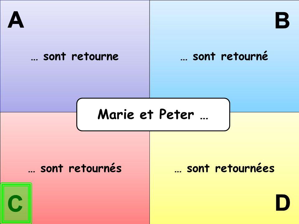 … sont retourne … sont retourné … sont retournés … sont retournées Marie et Peter …