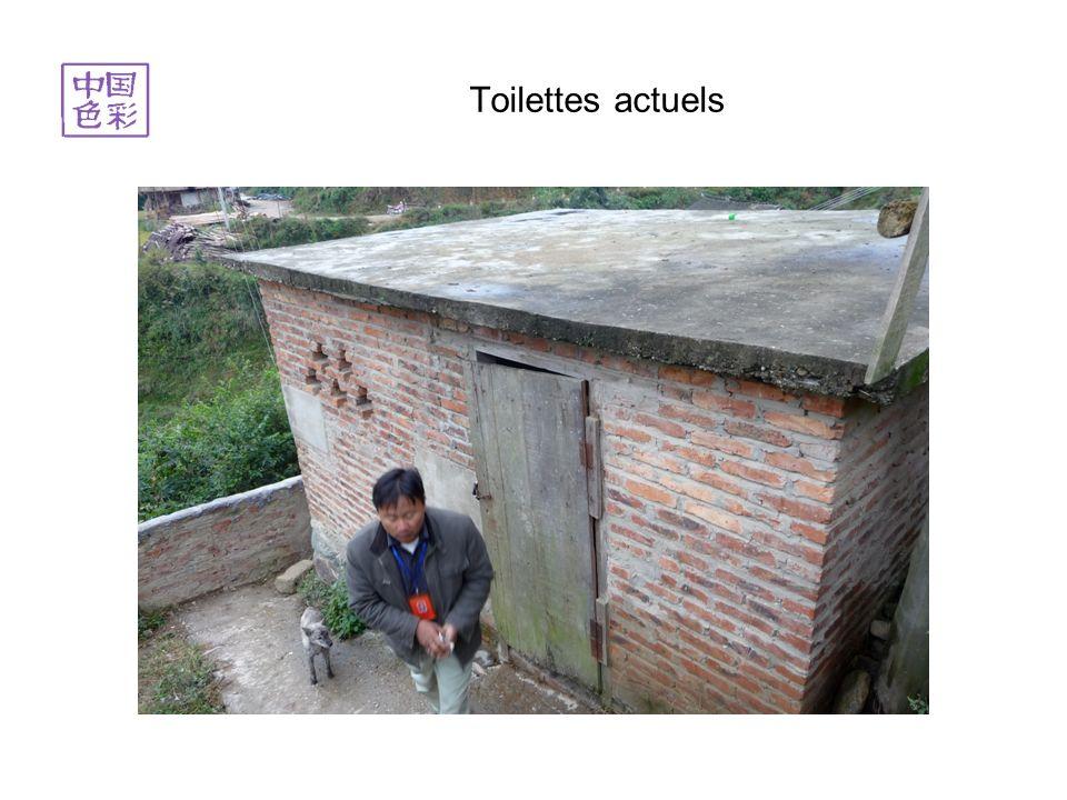 Toilettes actuels
