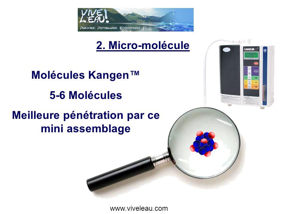 2. Micro-Molécule Molécule normale H2O Kangen Micro-Molécule www.viveleau.com
