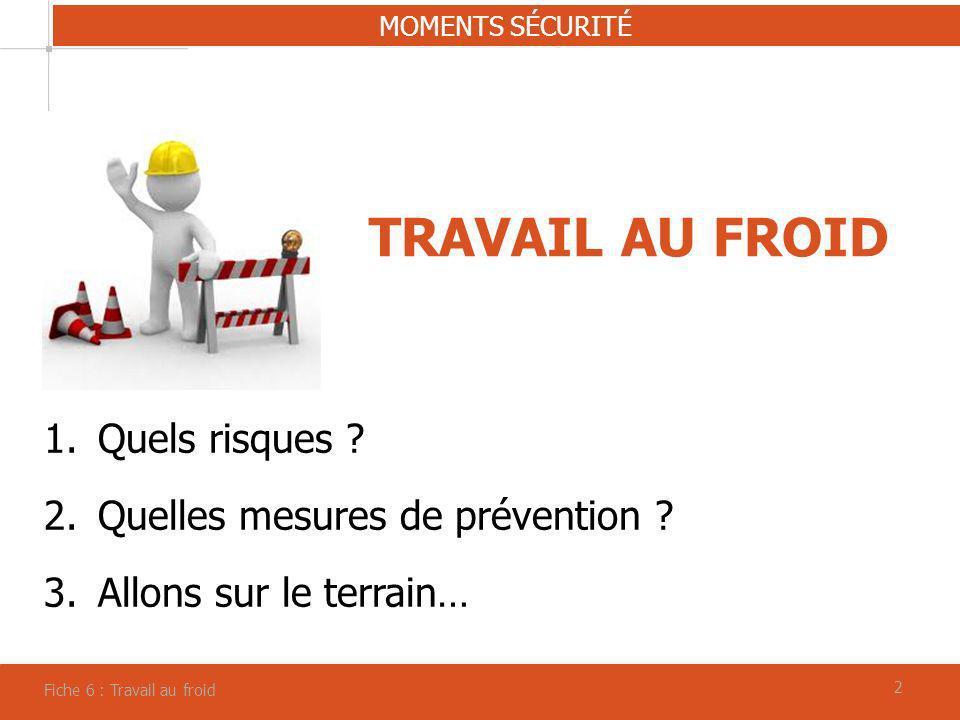 22 TRAVAIL AU FROID MOMENTS SÉCURITÉ Fiche 6 : Travail au froid 1.Quels risques ? 2.Quelles mesures de prévention ? 3.Allons sur le terrain…