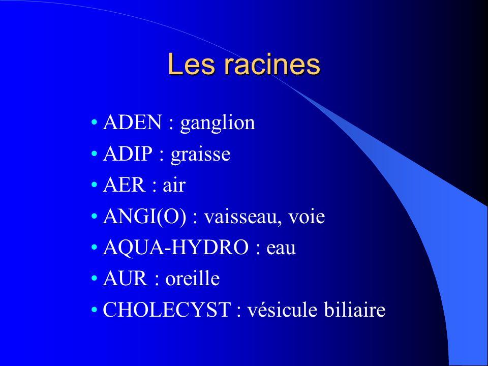 Les racines ADEN : ganglion ADIP : graisse AER : air ANGI(O) : vaisseau, voie AQUA-HYDRO : eau AUR : oreille CHOLECYST : vésicule biliaire