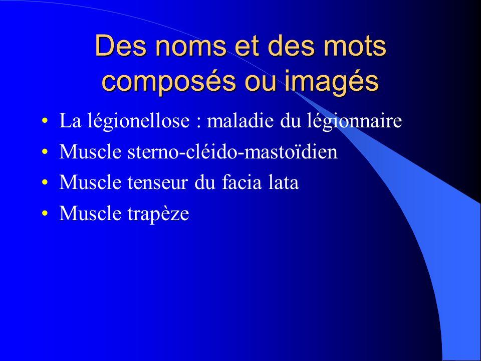Des noms et des mots composés ou imagés La légionellose : maladie du légionnaire Muscle sterno-cléido-mastoïdien Muscle tenseur du facia lata Muscle trapèze