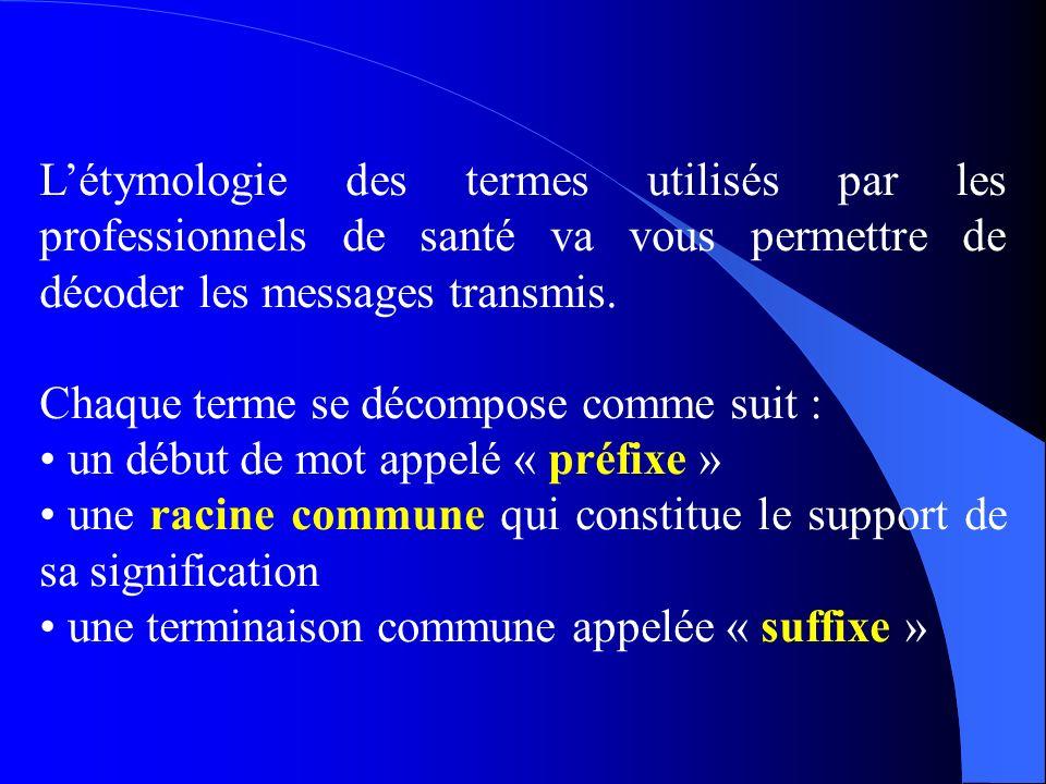 Létymologie des termes utilisés par les professionnels de santé va vous permettre de décoder les messages transmis.