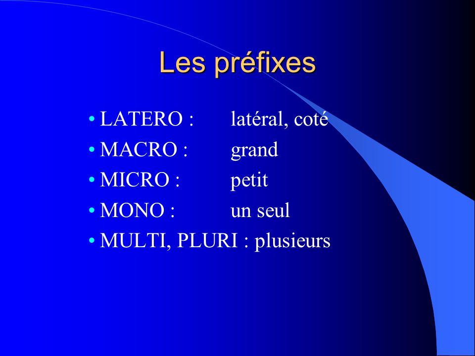 Les préfixes LATERO : latéral, coté MACRO : grand MICRO : petit MONO : un seul MULTI, PLURI : plusieurs