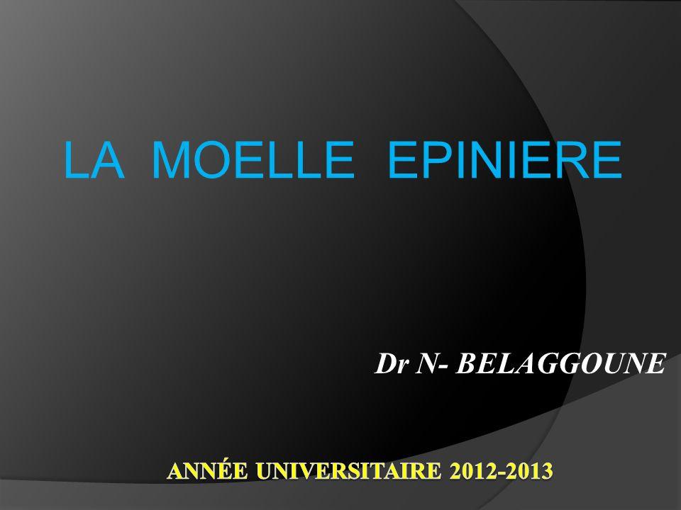 Dr N- BELAGGOUNE LA MOELLE EPINIERE