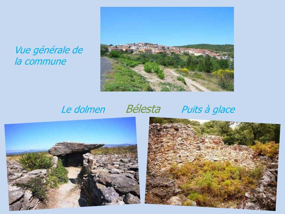 Château vicomtal Canet-en-Roussillon Château vicomtal Le front de mer