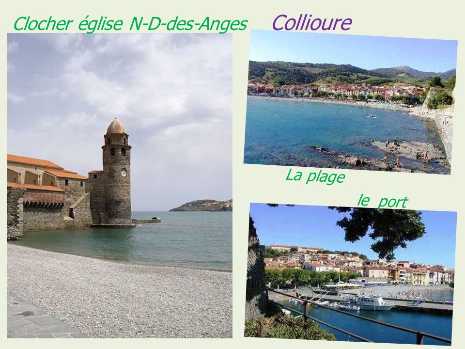 Collioure le château royal