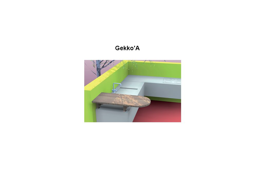Gekko'A