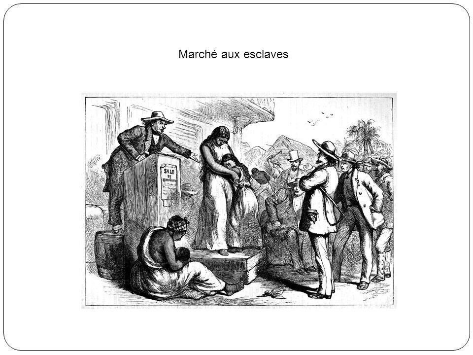 Le Commerce Triangulaire a servi économiquement les intérêts des colonies américaines et il était base du système de production des plantations ainsi