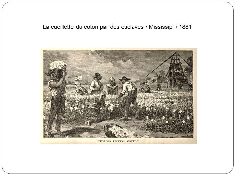Convoi d'esclaves, enchaînés et captifs de jougs de bois / 19e siècle / Afrique centrale