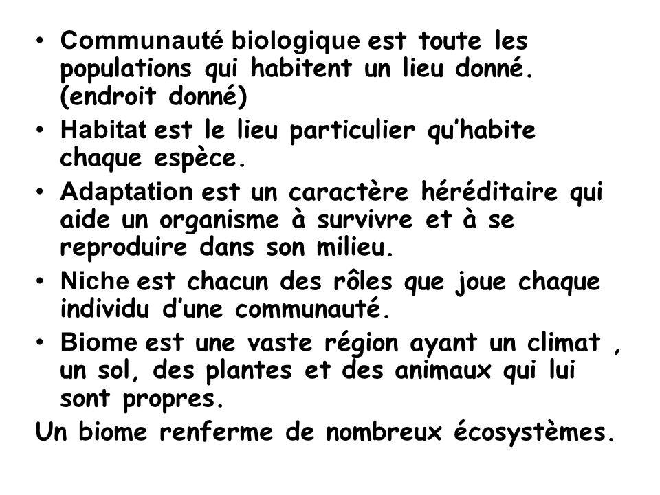 Les niveaux dorganisation biologique i.un Individu ii.une Population iii.une Communauté iv.un Écosystème